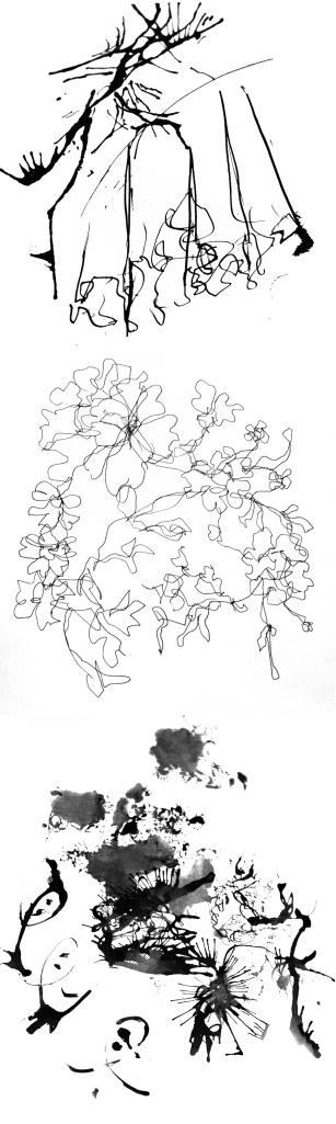 Somewhat impressionistic studies of antique laces